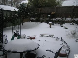 Mar 16 2007 015