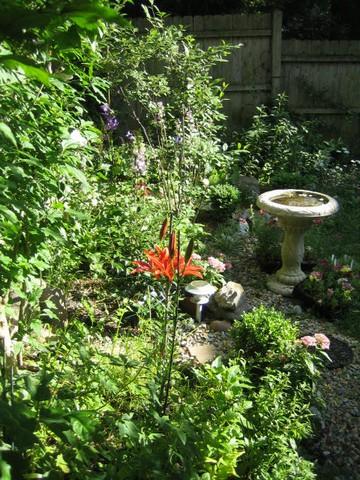 Garden 072207_028